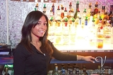 Vandome Bartender